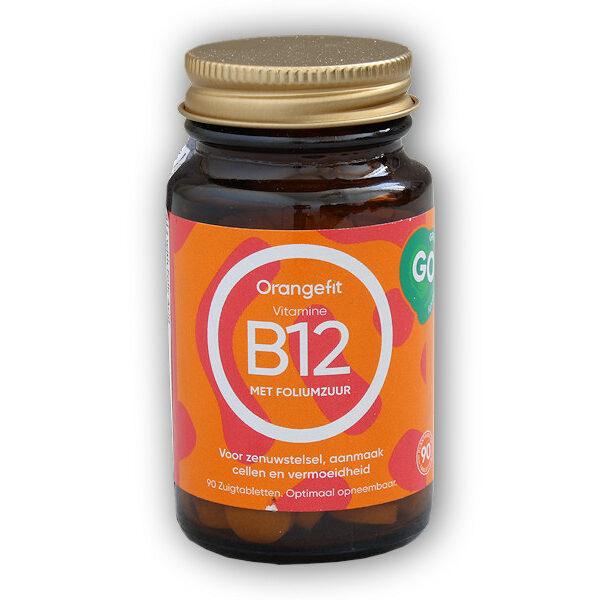 Vitamine B12 with Folic Acid 90 pastilek Vitamine B12 with Folic Acid 90 pastilek